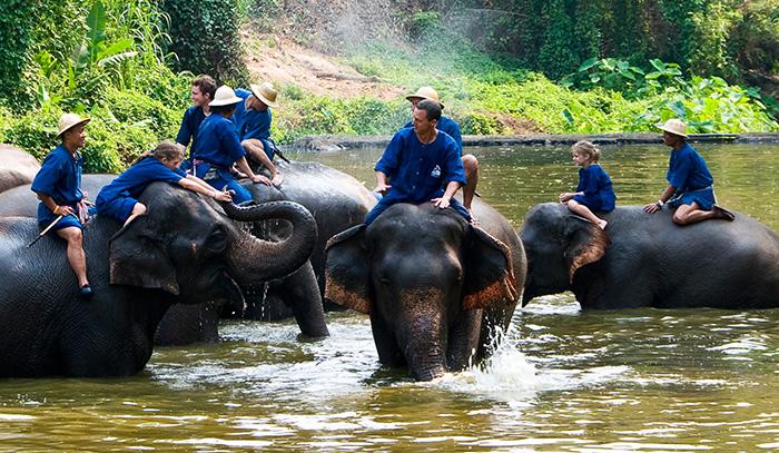 这是一座环境优雅、庙宇林立、魅力四射的马车之城。 该府的泰国大象保护中心在当地颇为有名,这里居住着国王御用的白象,观看大象表演、学习大象知识,已成为不少游客热衷的体验项目。 而对于那些匆匆而过,只为参观泰国大象保护中心或是绕过南邦直奔清迈,甚至去往更北的府的游客,或许永远感受不到这座城市令人惊艳的地方,他们将错过作为该府象征、记载着厚重历史的马车和斗鸡,还有鲜为人知的故事。 说起南邦,其历史早在人类定居王河流域就已开始,其中一些日期甚至可以追溯到1000多年前,境内更是有着丰富的从兰纳和缅甸王朝遗留下来